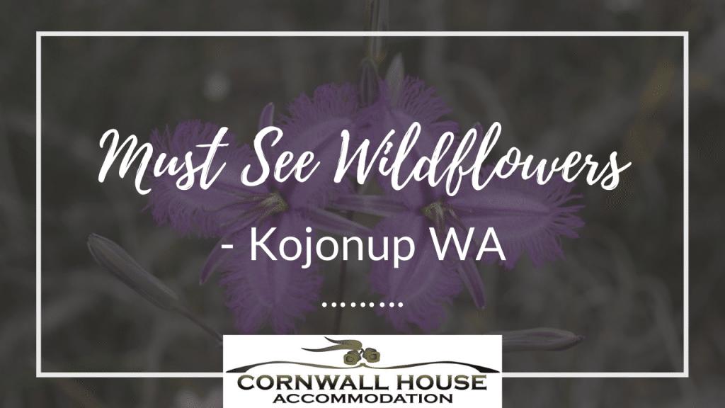 Must See Wildflowers – Kojonup WA - Motel Accommodation Kojonup - Cornwall House Accommodation