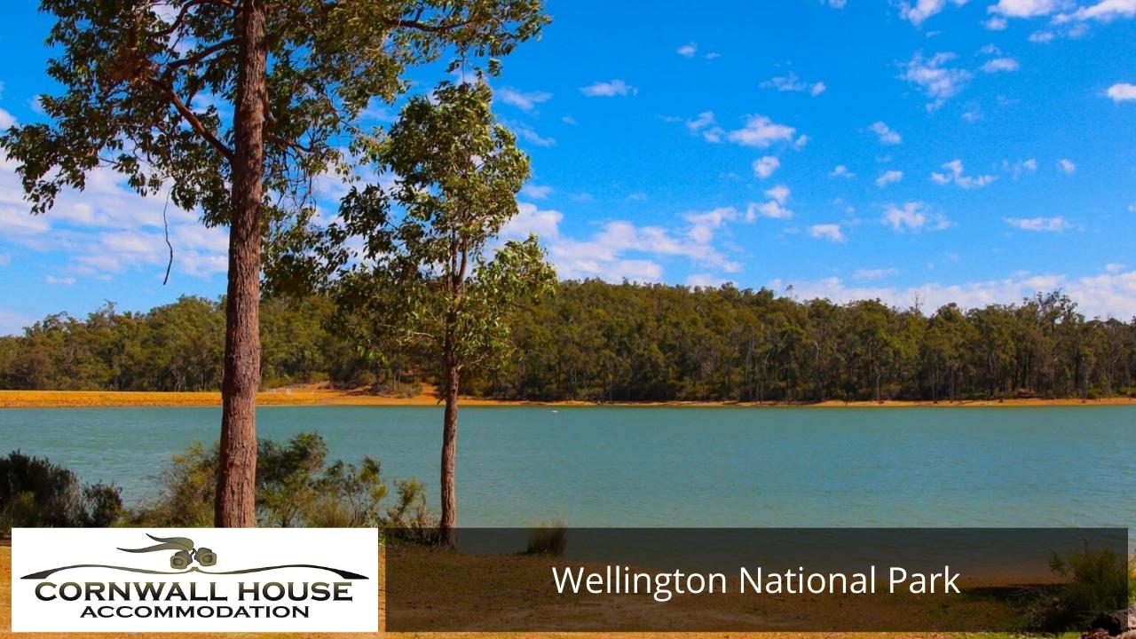 Wellington National Park