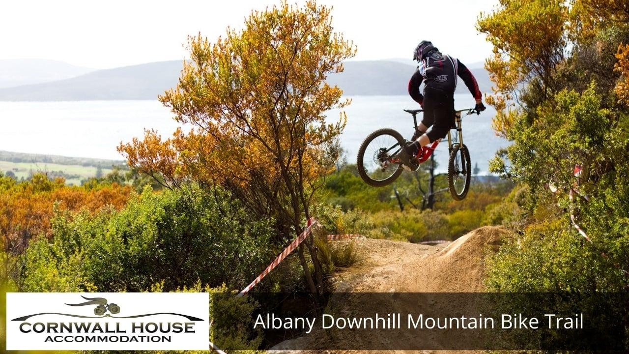 Albany Downhill Mountain Bike Trail
