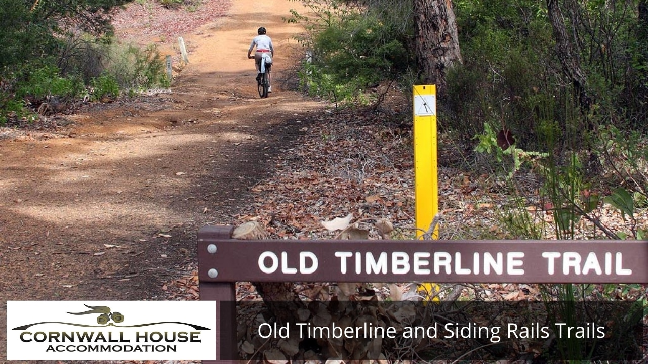 Old Timberline and Siding Rails Trails