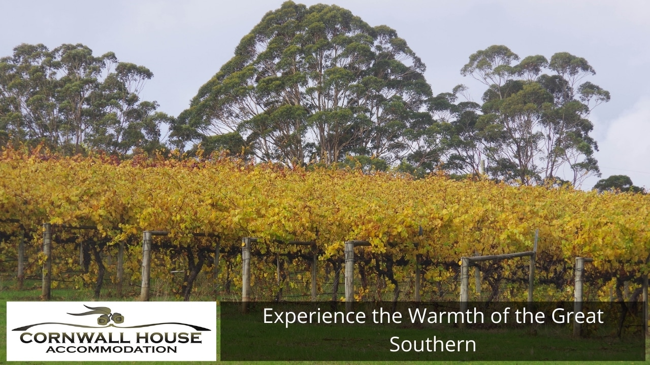 Experience the Warmth of the Great Southern