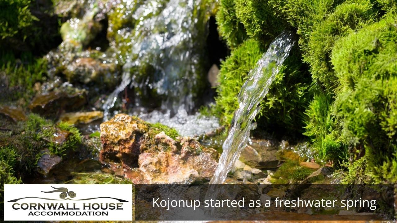 Kojonup started as a freshwater spring
