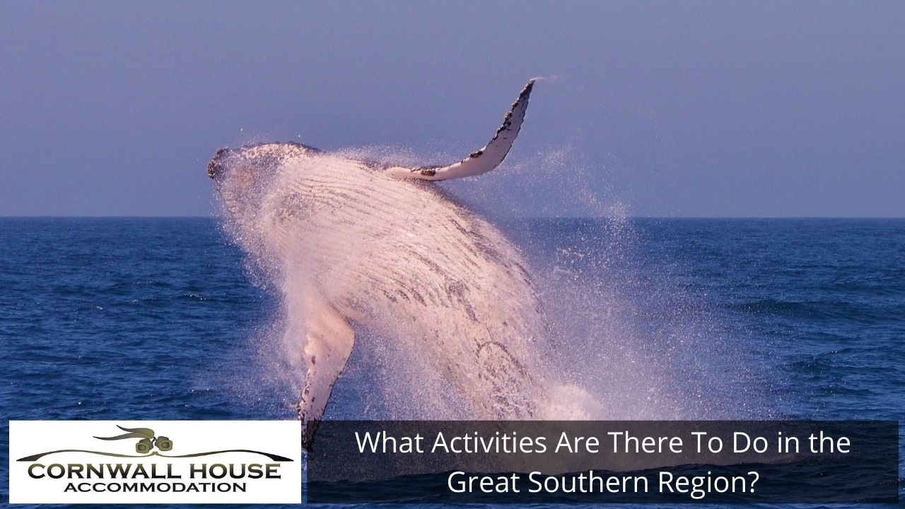 What Activities Are There To Do in the Great Southern Region