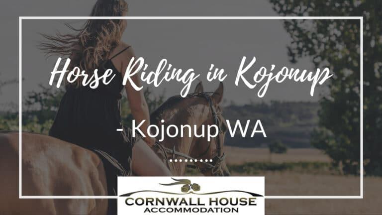 Horse Riding in Kojonup